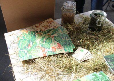 Graspapier - eine nachhaltige Alternative